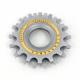NEUF Pignons pour roue libre Campagnolo Super Record 50th anniversary edition
